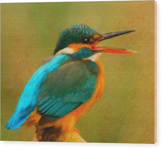 Feathered Friends Wood Print