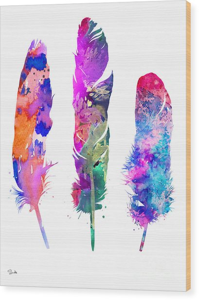 Feathers 3 Wood Print