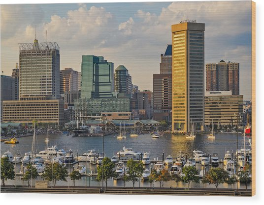 Federal Hill View To The Baltimore Skyline Wood Print