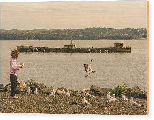 Feeding Birds Wood Print