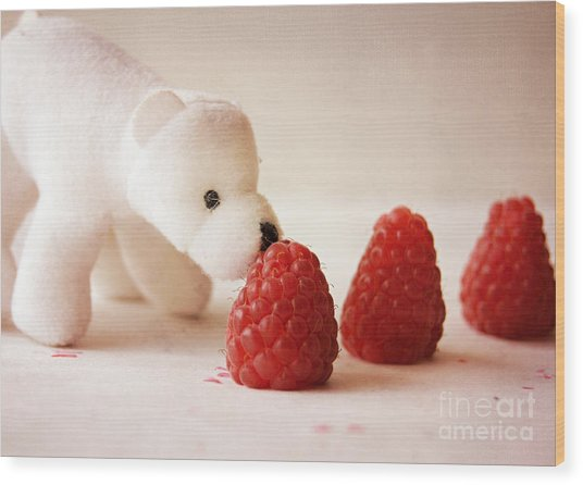 Feeding The Polar Bear I Wood Print