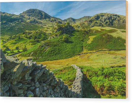 Fell Foot Little Langdale Lake District Wood Print by David Ross