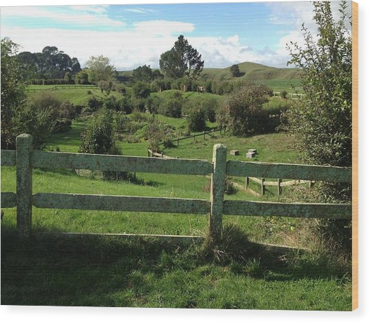 Fence And Beyond Wood Print by Ron Torborg
