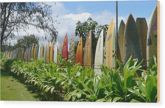 Fence Of Old Surfboards Photograph By John Orsbun