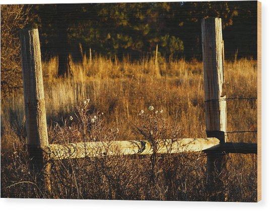Fence Posts Wood Print