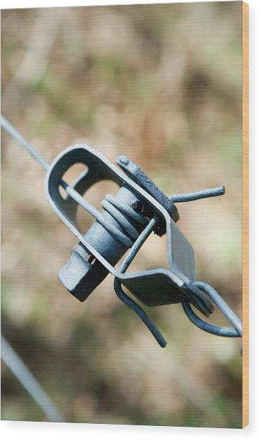 Fence Wire Tightener Wood Print by Gustoimages/science Photo Library