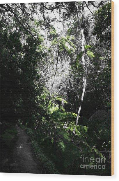 Fenced Green Wood Print