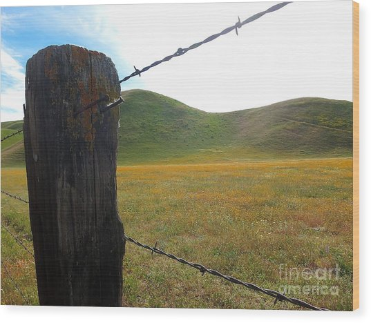 Fencepost On The 58 Wood Print