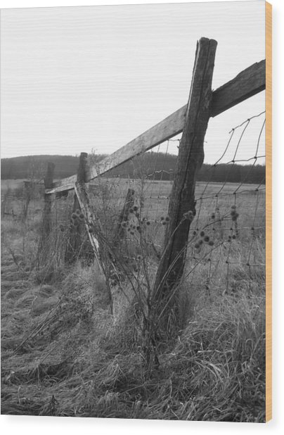 Fences Black And White I Wood Print