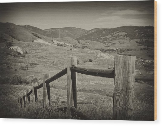 Fencing Wood Print