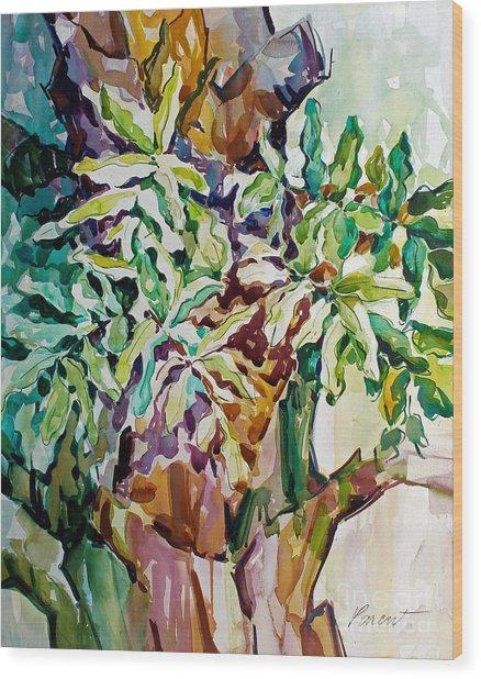 Ferns And Bismark Rhythms  Wood Print