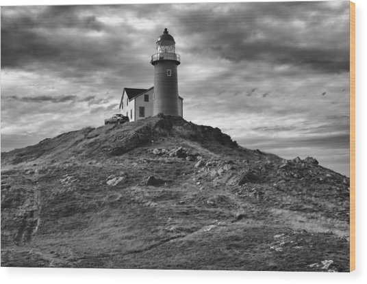 Ferryland Lighthouse Wood Print
