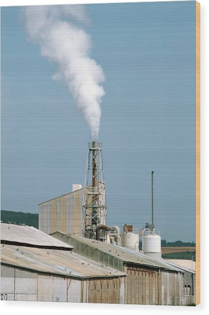 Fertiliser Factory Smokestack Wood Print by Alex Bartel