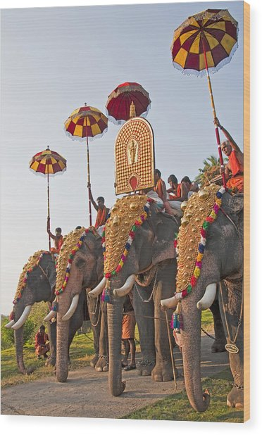 Kerala Festival Elephants Wood Print