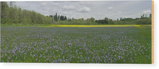 Field Of Camas And Western Buttercup Wood Print by John Higby