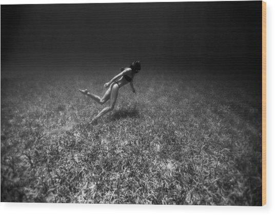 Field Of Dreams Wood Print by One ocean One breath