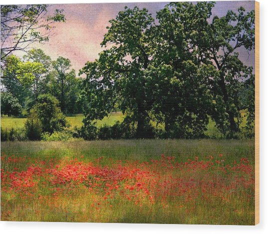 Field Of Poppies Wood Print by Anne McDonald