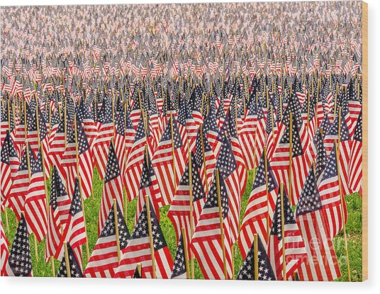 Field Of Us Flags Wood Print