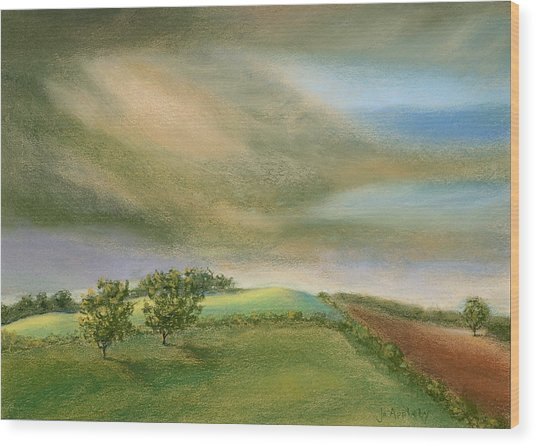 Fields In The Sun Wood Print