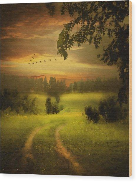 Fields Of Dreams Wood Print