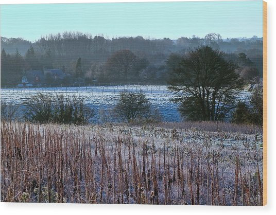 Fields Of Frost Wood Print by Karen Grist