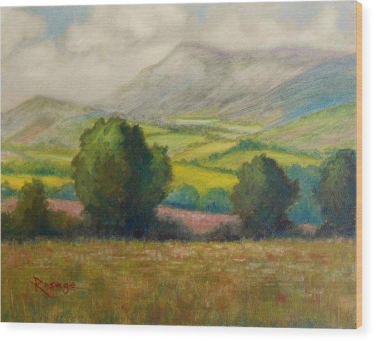Fields Of Tipperary   Ireland Wood Print by Bernie Rosage Jr