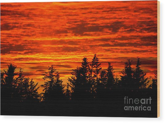 Fiery Alaskan Sunset Wood Print by Paul Karanik