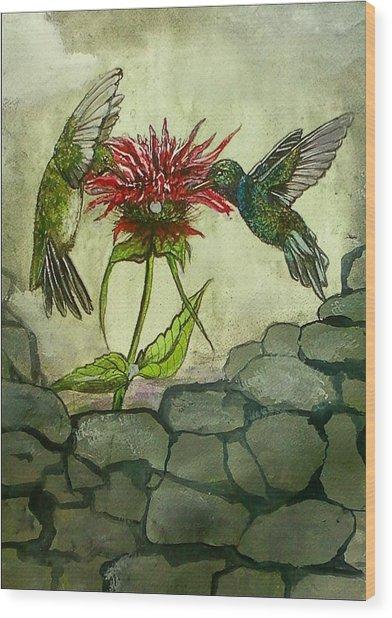 Fight Of The Hummingbirds Wood Print