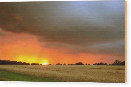 Fighting Sun Wood Print by Dave Woodbridge