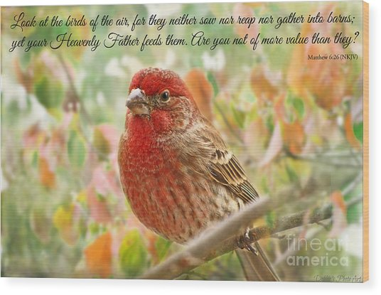 Finch With Verse New Version Wood Print