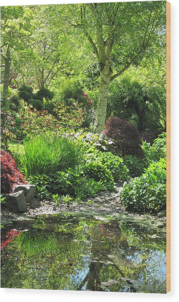 Finnerty Gardens Pond Wood Print