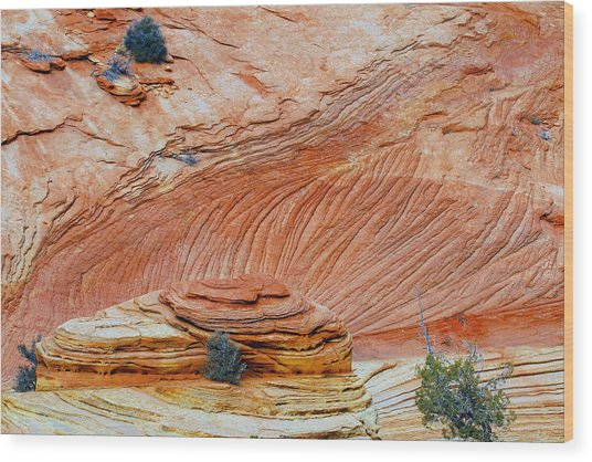 Fins In Zion Canyon Np Wood Print