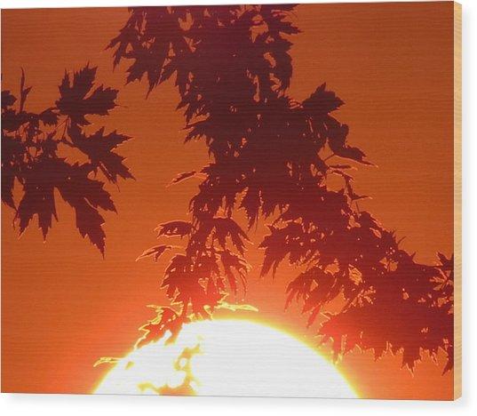 Fire Burning Sun Wood Print