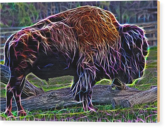 Fire Of A Bison  Wood Print