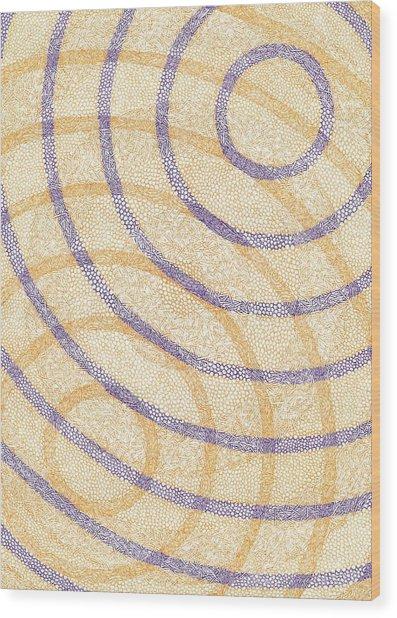 Firmamentals Wood Print by William Burns