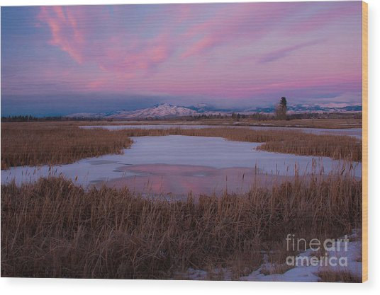 Wood Print featuring the photograph First Evening 2013 by Katie LaSalle-Lowery