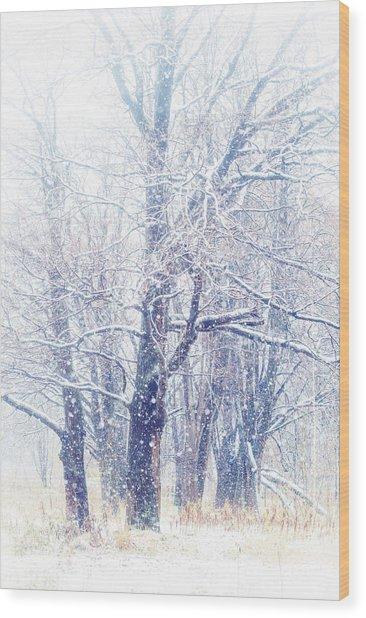 First Snow. Dreamy Wonderland Wood Print