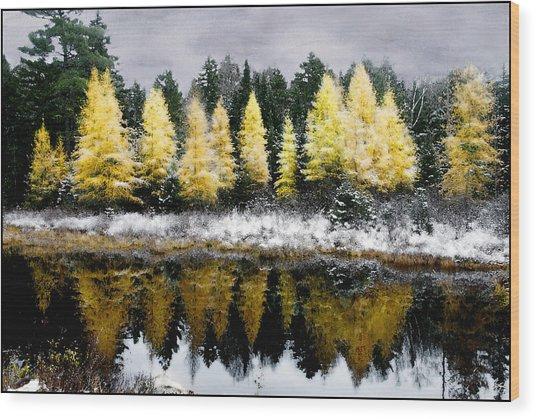 Tamarack Under A Painted Sky Wood Print