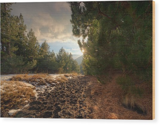 First Snow On Mount Etna Wood Print