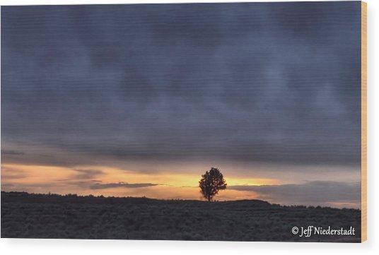First Sunset Wood Print
