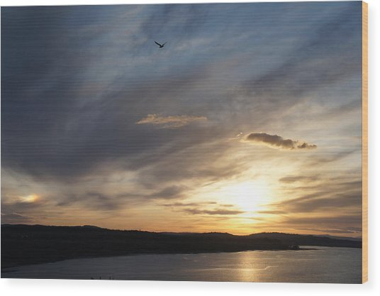 Firth Of Forth In The Sunset Wood Print