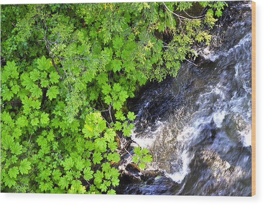 Fish Creek In Summer Wood Print