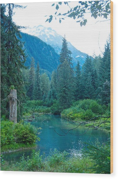Fish Creek In Tongass National Forest By Hyder-ak  Wood Print