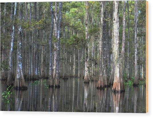 Fisheating Creek Wood Print by Bob Jackson