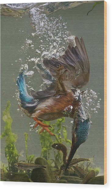 Fisherman Wood Print