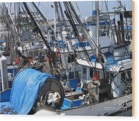 Fishing Boats In Monterey Harbor Wood Print