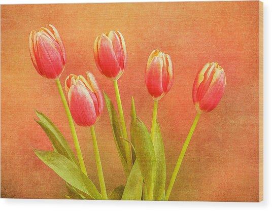 Five Tulips Wood Print