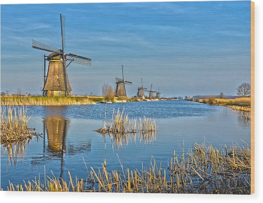 Five Windmills At Kinderdijk Wood Print