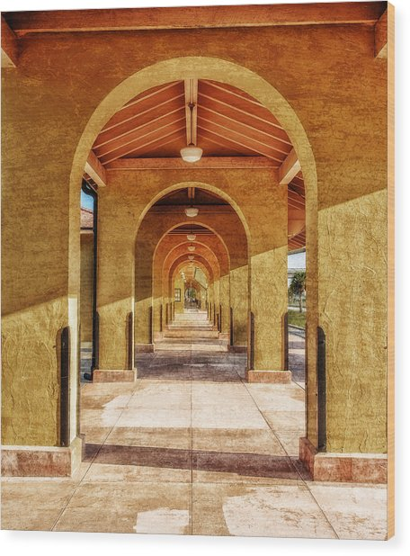 Historic 1927 Train Station - Venice Florida Wood Print