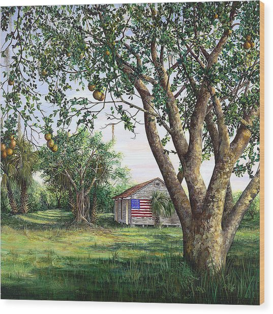 Flag House Wood Print